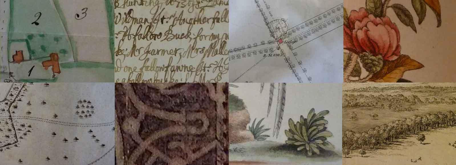 Camilla Beresford Landscape Historian Process
